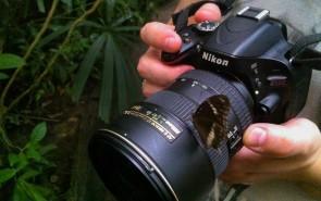 Фотоохота