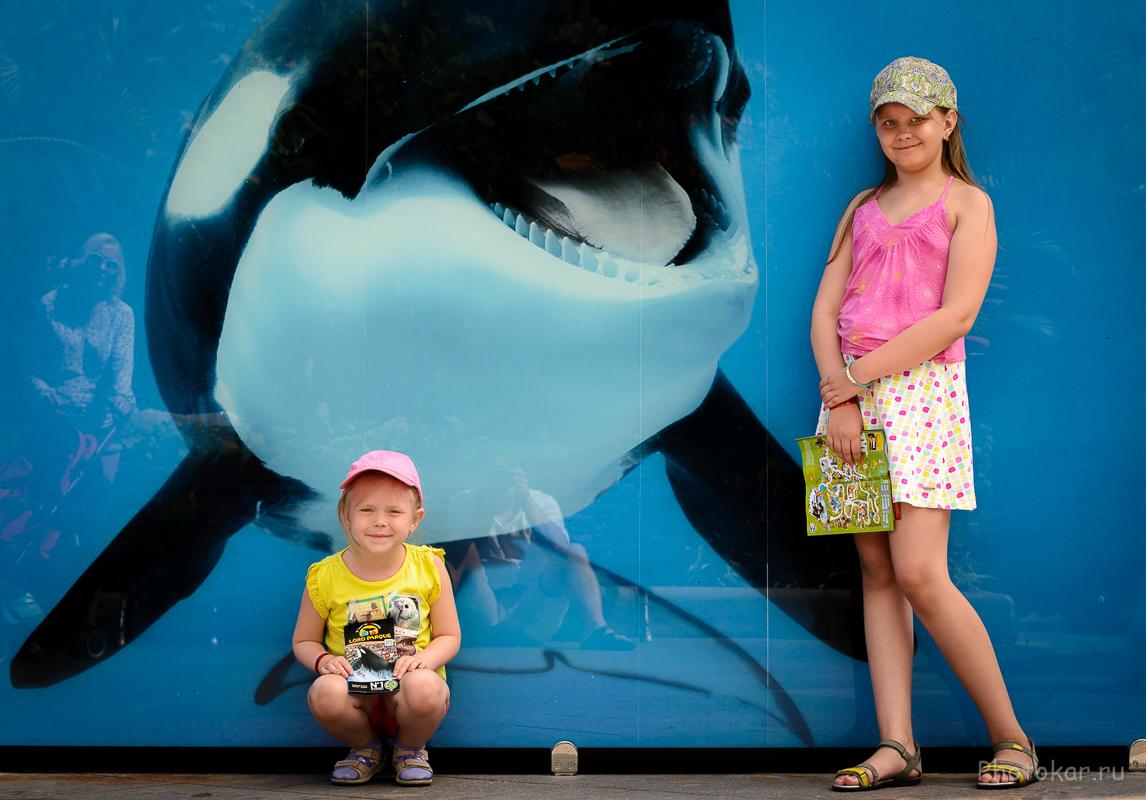 Семейное путешествие по Тенерифе. Часть 1 | Photokar